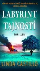 Linda Castillo: Labyrint tajností. Klikněte pro více informací.